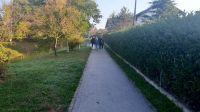 zelena_čistka_1